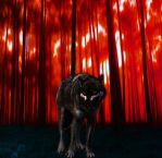 Lone Wolf by CorpseGrinder562