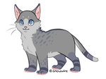 15 Point Cat adopt closed by thedoomedkitteh