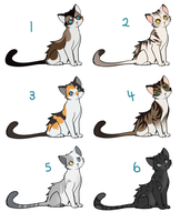 Cat point adopts by tootflap