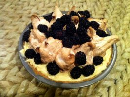 Blackberry and Lime Curd Meringue Pie ... by pinballwitch