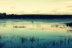 Waterscape by Peterdoesphotography