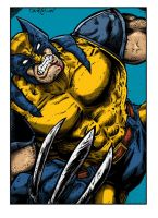 Wolverine Colors by ChrisMcJunkin