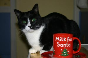 No Milk For Santa by Geak-of-Nature