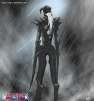 Bleach cap 530 pag 17 a vasto Lorde?? by 19JG95