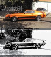 Photoshop Before After Mustang by Aparicio94