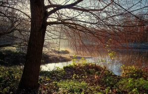 Mist on the Lagan by Gerard1972