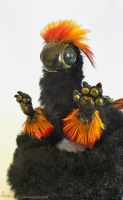 Vestra the Baby Fire Dragon SOLD 3 by Sovriin