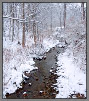 Snow creek. L1010010, with story by harrietsfriend