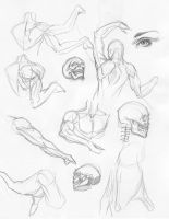 tons of studies 4 by igm-transformer
