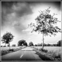 along the road by Weissglut