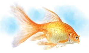 Doodle 112 - Kinguio - Golden Fish by giovannag