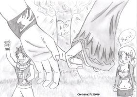 NaLu - Forever by Christina27122010