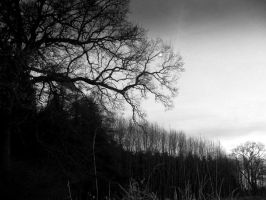 Blackness by weinrot93