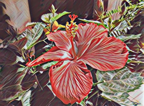 Hibiscus flower in the sun by LunaShineArts