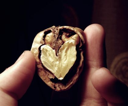 Hearted nut. by Me-Mania