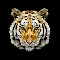 Fractal Tiger by JordanDSmith