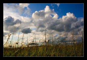 Cloudy skies by Batteryhq