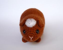 American crested guinea pig by LunasCrafts