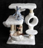Selfmade Cat tree :) by Dar-k-ling