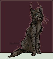 Character Sheet - Dapplepelt by Alija