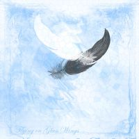 Flying on Glass Wings by Celtic-Sea