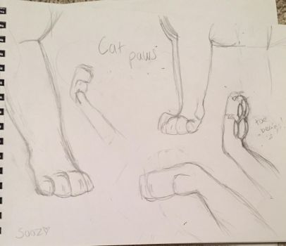 Cat paws practice! by Sooz19444