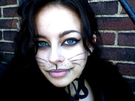 Halloween Kitty_02 by Quiet-Storm-Stock