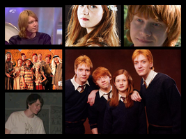 The Weasleys... by shannybabe123