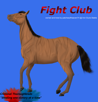 Fight Club 3yr Ref by patchesofheaven74