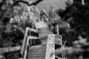Stairs by Zleepless
