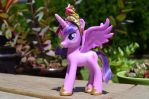 Princes Twilight Sparkle by Phoenix001