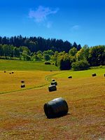 Dance of the hay bales by patrickjobst