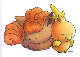 Vulpix and Torchic by Togechu
