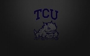 TCU Horned Frogs Hex 2 by MAGMADIV3R
