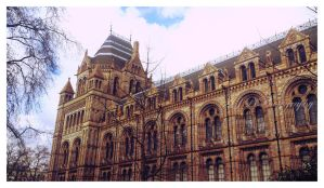 Natural History Museum by amyjls