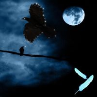 Night of the Ravens by Taelisian