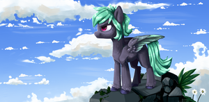 Take to the sky by AndromedaElric777777