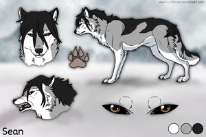 Sean TWolf Character Ref Sheet by SeanTWolf