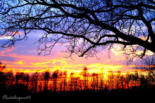 Fairy Sunset, Fury Sky and Trees Silhouette by Cloudwhisperer67