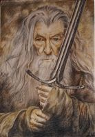 Gandalf by LeraRemarque