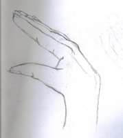 Hand Study 6 by waterfish5678901