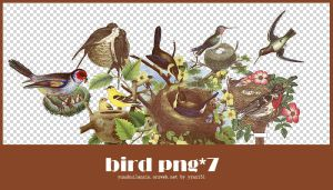 Bird png pack #02 by yynx151