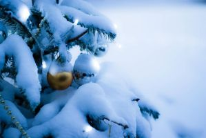 Im dreaming of a White Xmas 3 by Zincography