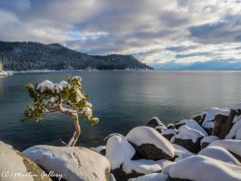 Lake Tahoe Nevada snow150301-69 by MartinGollery