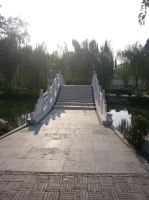 Bridge by Laura-in-china