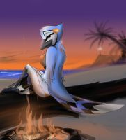 Birdies in the Sand - Kalli by corrvo