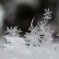 .snowflakes. by candymax