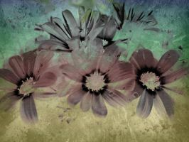 Flower Texture 24 by dknucklesstock