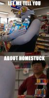 LET ME TELL YOU ABOUT HOMESTUCK by Foxiez