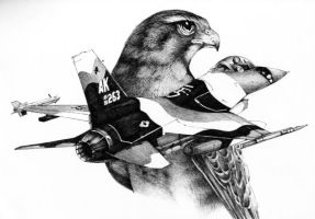Fighting falcon by Azotos